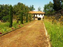 Casale da ristrutturare immerso nel verde in vendita a Vignone